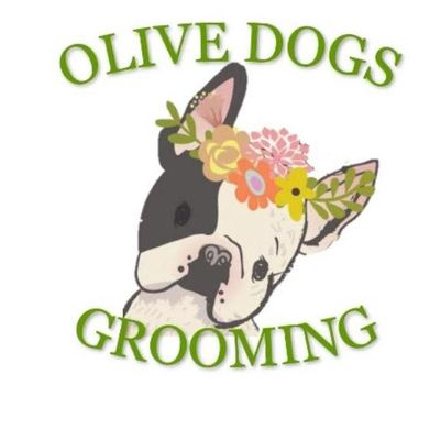 Avatar for Olive Dogs Grooming Salon Hastings, MN Thumbtack
