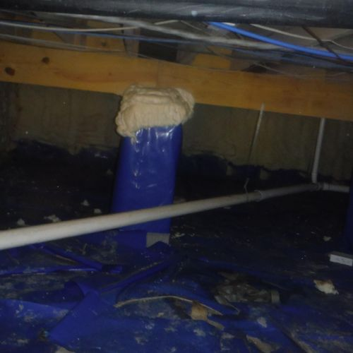 Before - Mold on joists and existing poly in crawl space