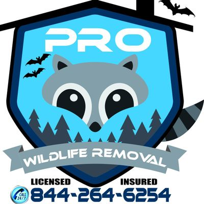 Avatar for Pro Wildlife Removal