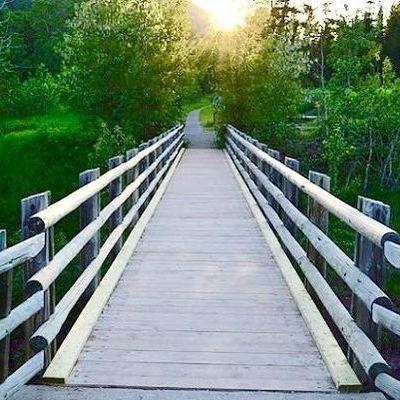 Avatar for Life Bridge Coaching CT