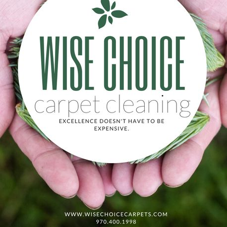 Wise Choice Carpet Care, LLC