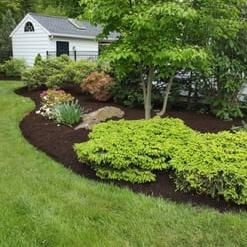 Avatar for A & Bros Landscaping & Zuñiga Contracting Chatham, NY Thumbtack
