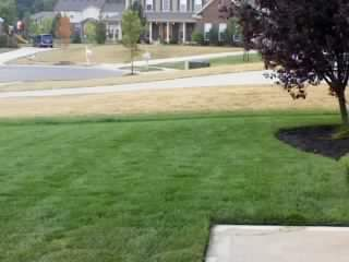 Avatar for Lawn Sprinklers West Chester, OH Thumbtack