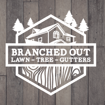 Avatar for Branched Out Gutters