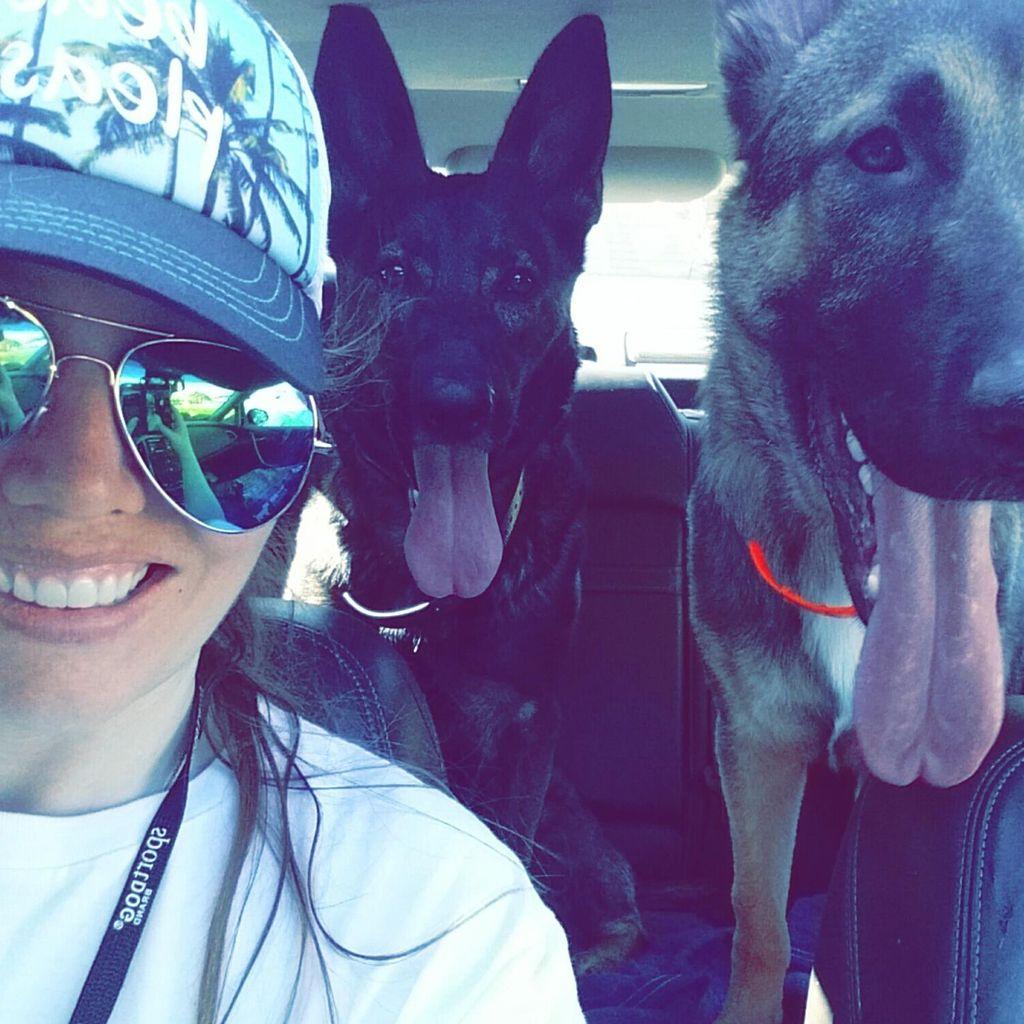 Kerri's Canines