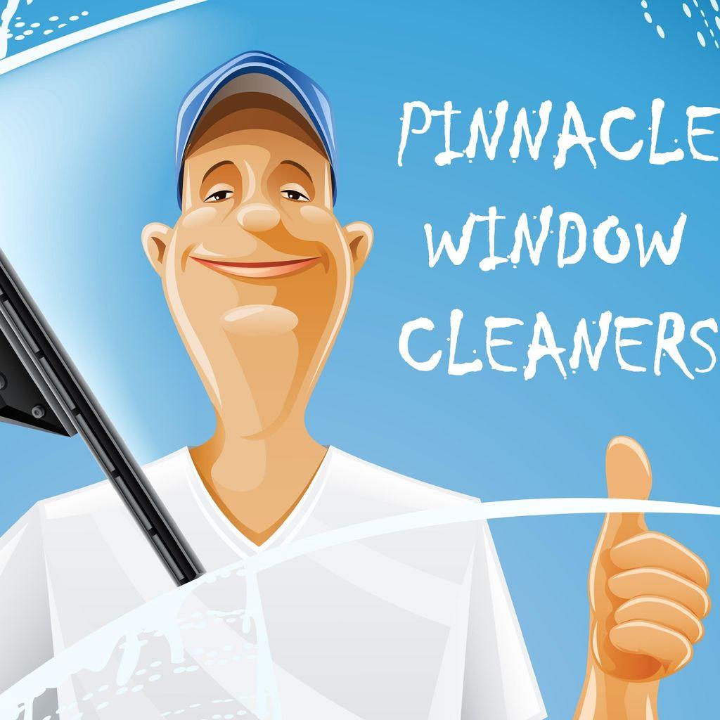 Pinnacle Window Cleaners