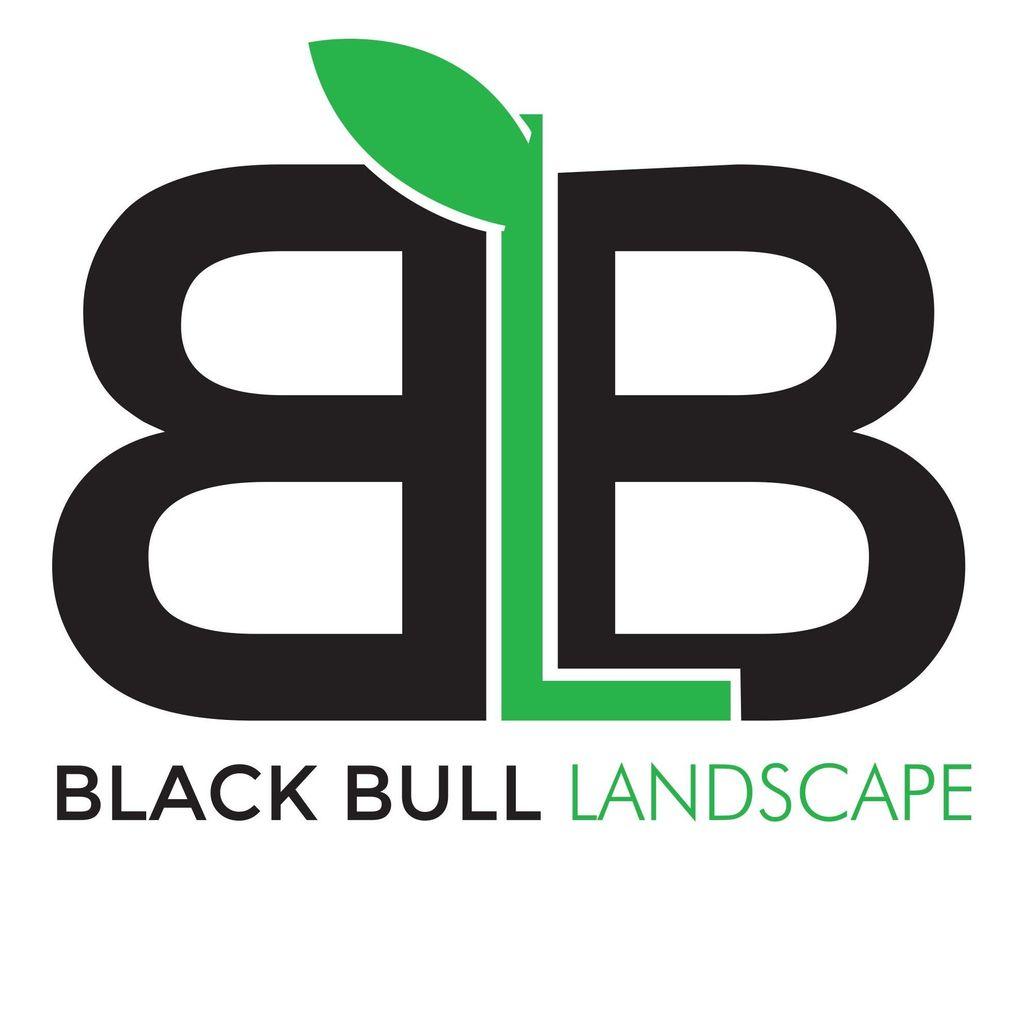 Black Bull Landscape