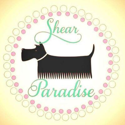 Avatar for Shear Paradise Dog Grooming