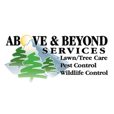 Avatar for Above and Beyond Services, LLC Denver, CO Thumbtack
