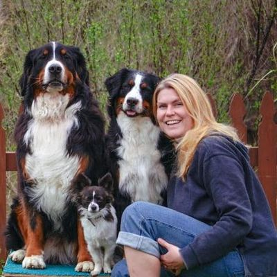 Avatar for Freak on a Leash LLC Dog Training CPDT-KA Virginia Beach, VA Thumbtack
