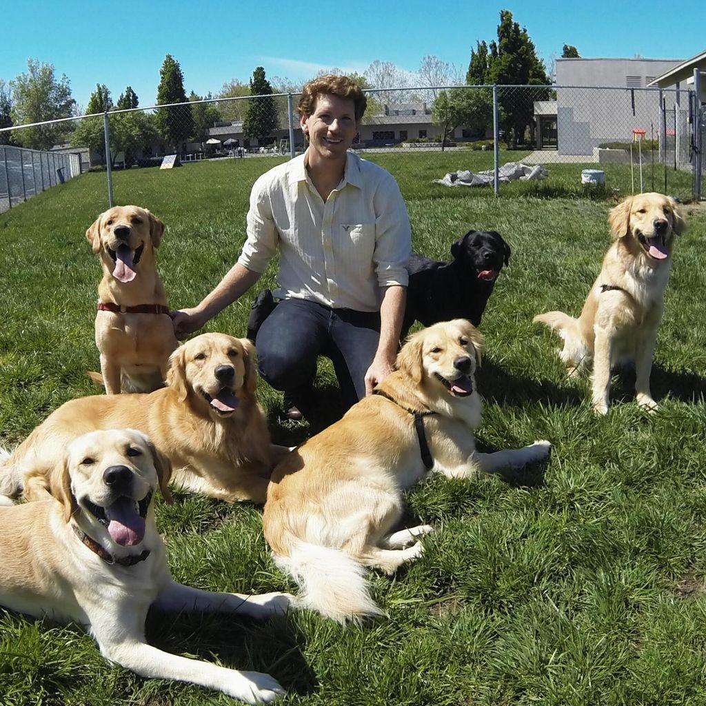 Temecula Best Friend Dog Training