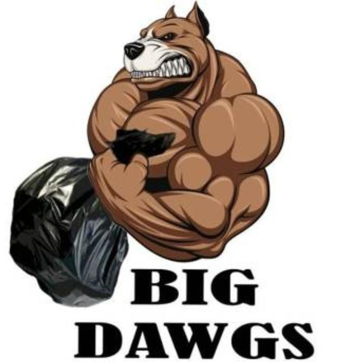 Big Dawgs Hauling Junk