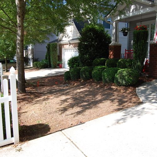 4-Before: Using the incorrect type of sod will cost you loose your evergreen look  (John R.)