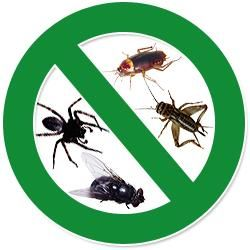 4 Seasons Pest Management