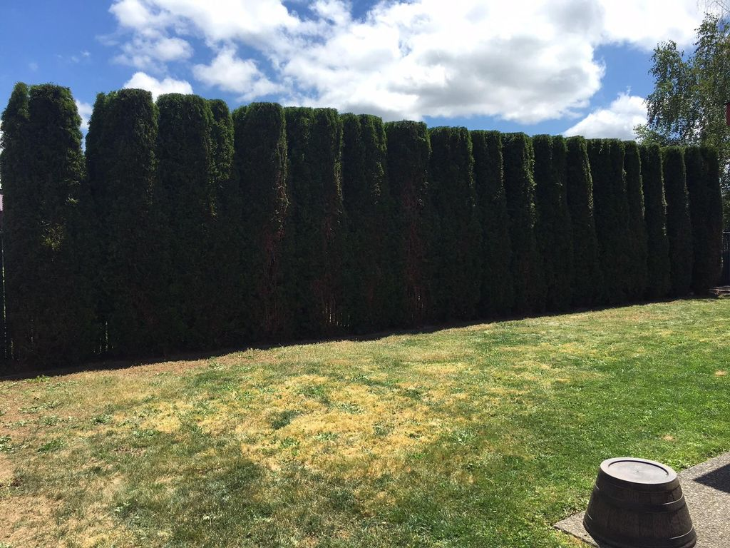 Green Scape Landscaping LLC