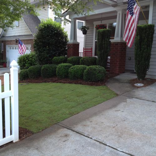 6-After: Yard was tilled and raked for new zoysia sod. ( John R.)