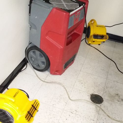One Dehumidifier and 2 fans set up to help bring down the high levels of humidity in the bathroom after a leaky roof damage