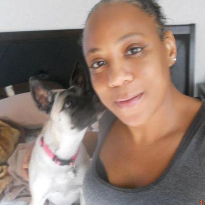 Avatar for Hotel Cali 5-Star Dog Hotel Lakeland, FL Thumbtack