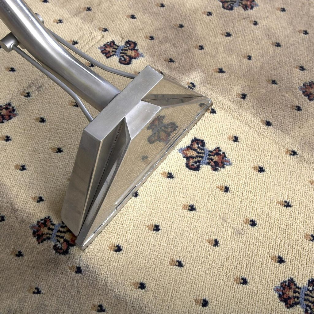 TriStar Carpet Cleaning & Repair