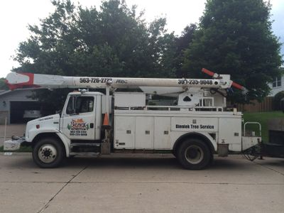 Avatar for Bieniek Tree Service Barstow, IL Thumbtack