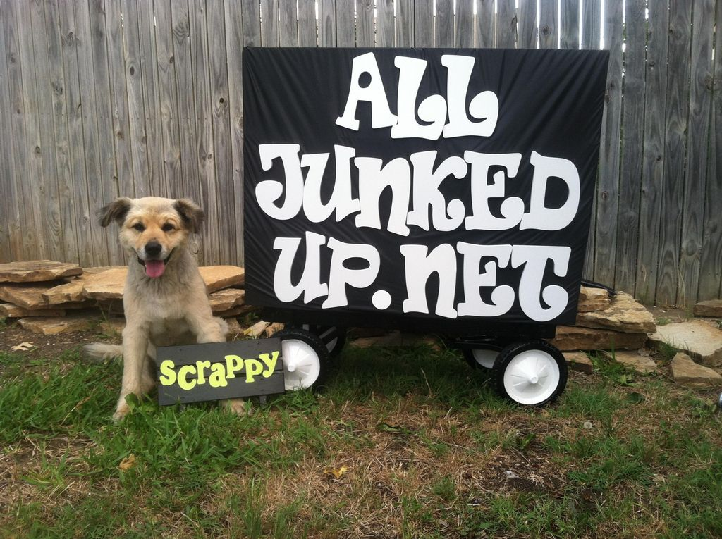 All Junked Up  Junk Removal and Hauling