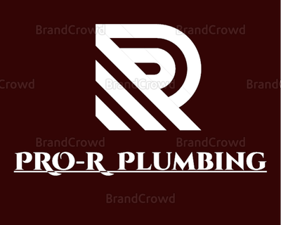 Avatar for ProR Plumbing Bronx, NY Thumbtack