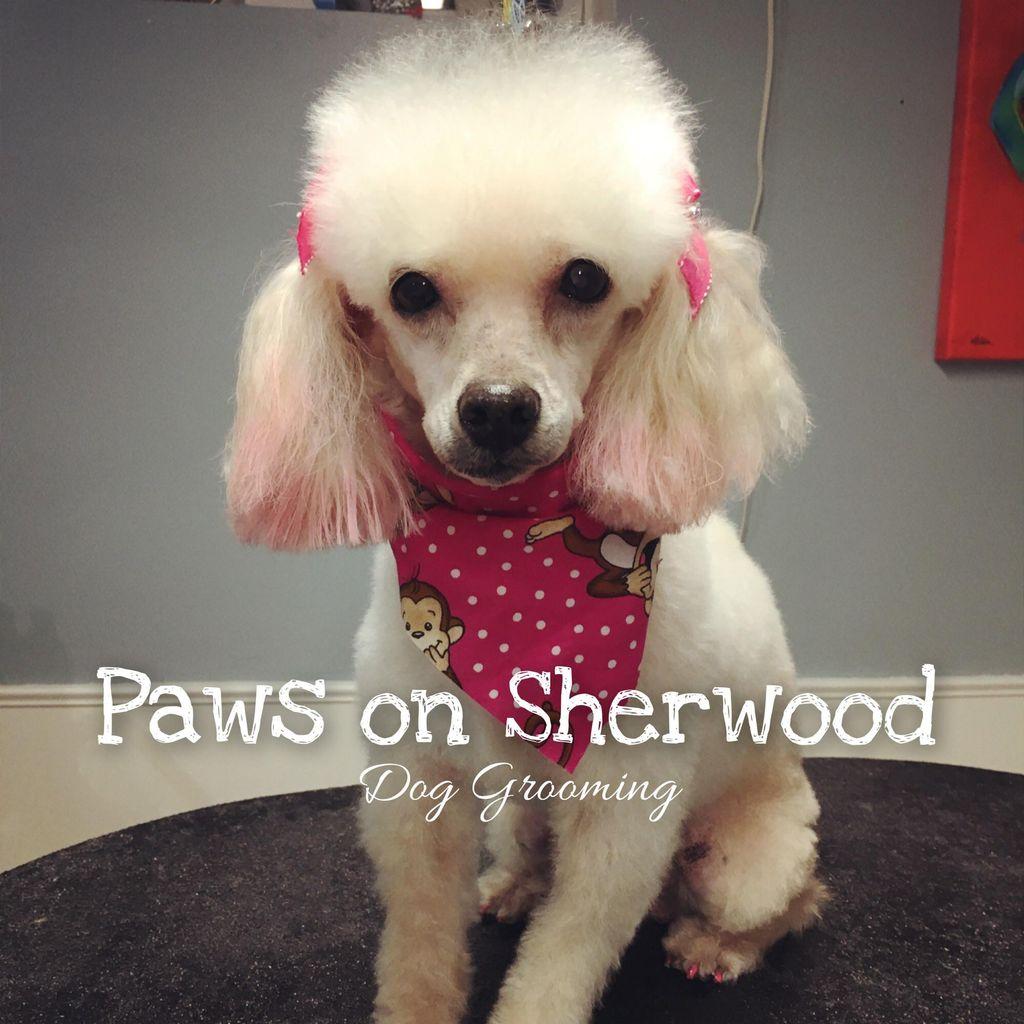 Paws on Sherwood