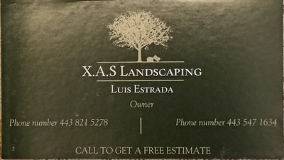Avatar for xas landscaping