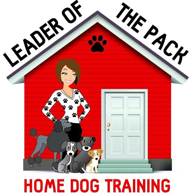 Leader of the Pack Home Dog Training