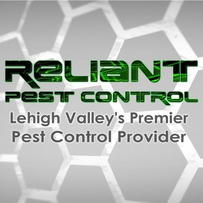 Avatar for Reliant Pest Control Llc. Easton, PA Thumbtack