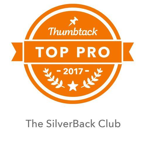 Top Pro Since 2015