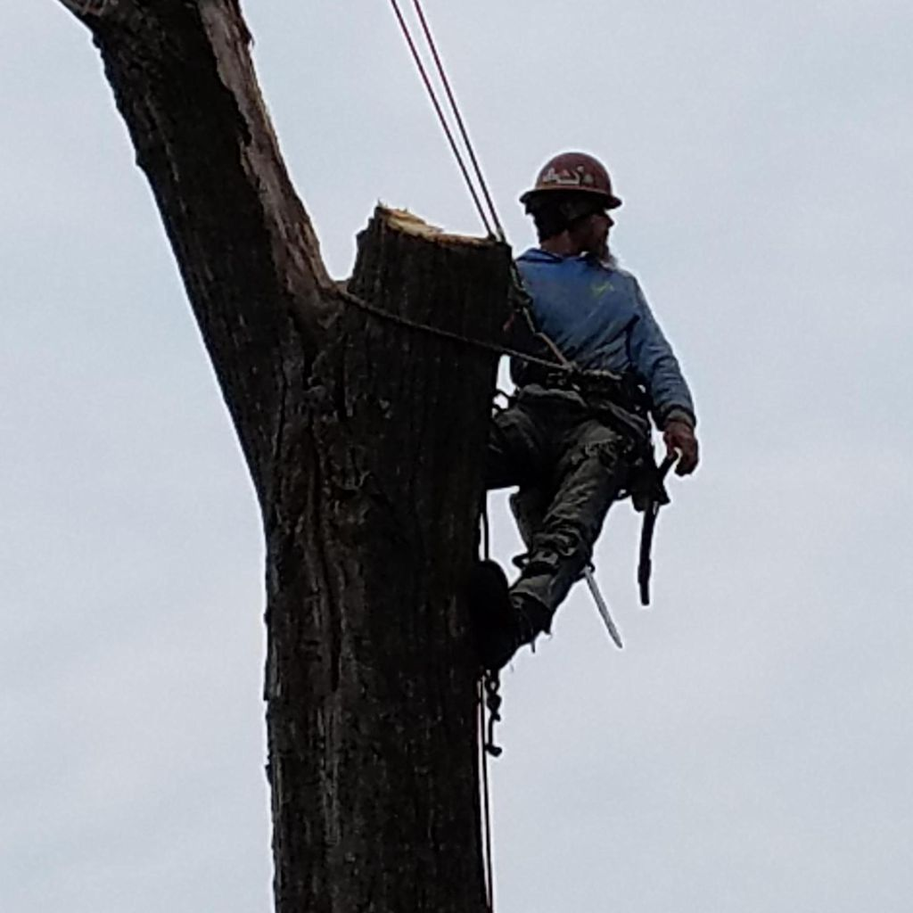 Voss Land & Tree Service