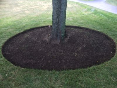 Avatar for Northern Illinois Lawn Care