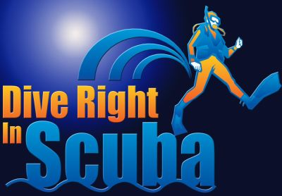 Avatar for Dive Right In Scuba, Inc. Plainfield, IL Thumbtack