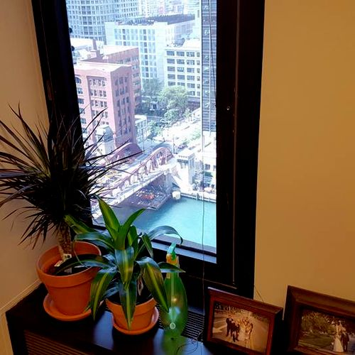 View from one of our partner's offices on Wacker Drive