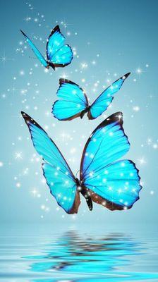 Avatar for Tatiana Wellesley Hills, MA Thumbtack