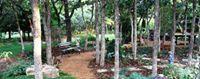 Avatar for Edmond Landscapes & Grounds Maintenance, Inc.