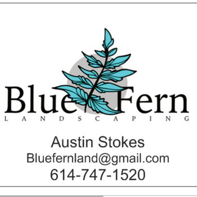 Avatar for Blue Fern Landscaping LLC