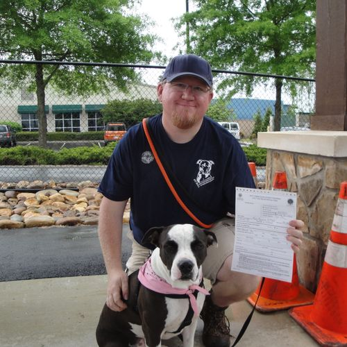 Missy obtaining her AKC's Canine Good Citizen