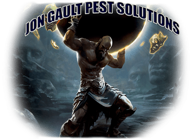 Avatar for Jon Gault Pest Solutions