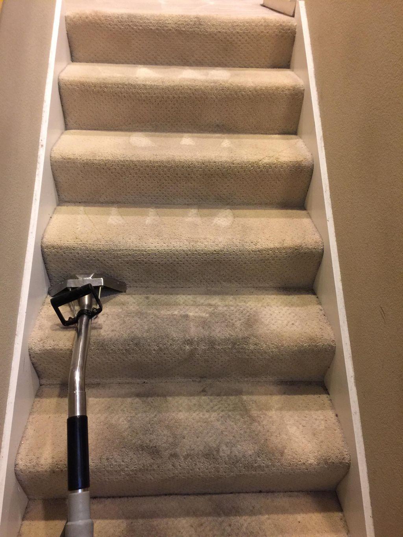 Gosa carpet and floor care tech
