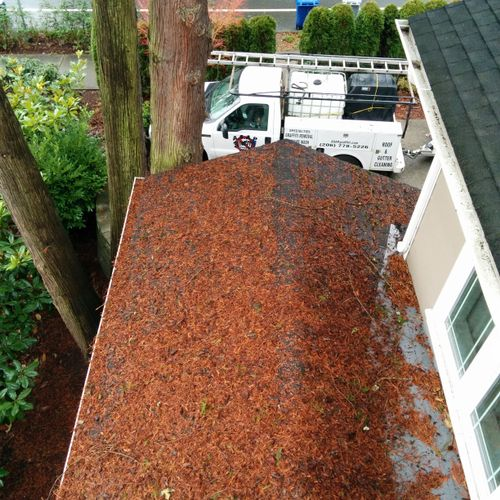 asphalt shingles roof before the the cleaning process