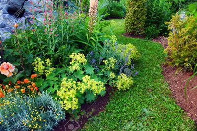 Avatar for Green Earth Gardens and Landscapes LLC Northville, MI Thumbtack