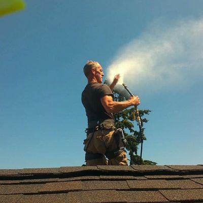 Avatar for Ospray Roof Cleaning