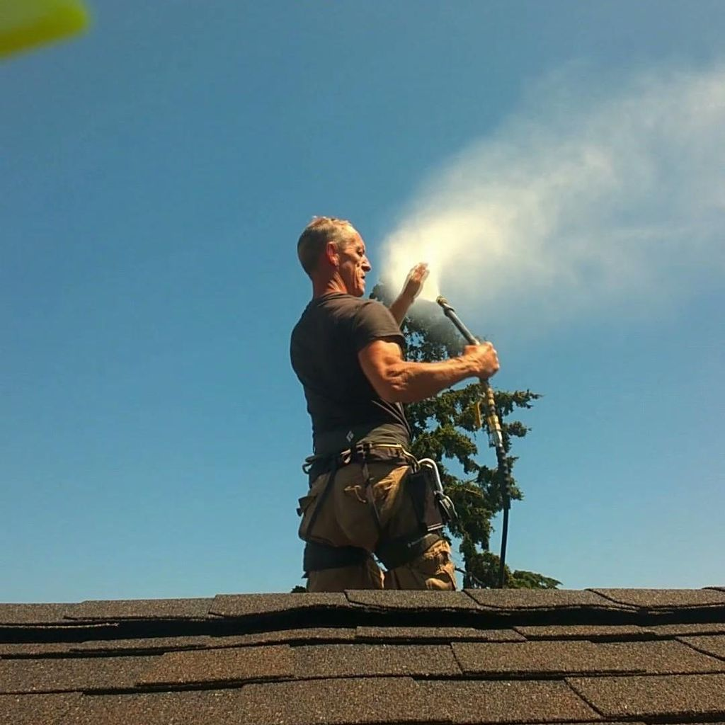 Ospray Roof Cleaning