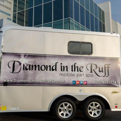 Avatar for Diamond In The Ruff Mobile Pet Spa Edmond, OK Thumbtack