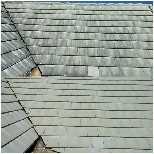 Roof cleaning isn't just about making your roof look better, it's about prolonging the life of your roof.
