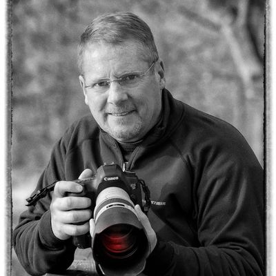 Avatar for Dale Pickett Photography -AIR-DALE