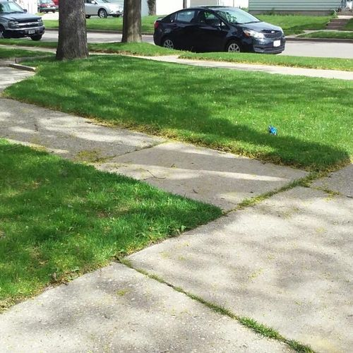 Front side Lawn (After)