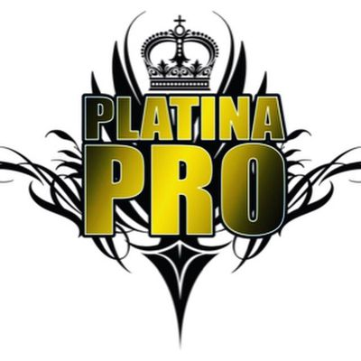 Avatar for Platina  Productions Inc